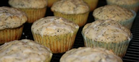 meyer-lemon-poppy-seed-muffins.jpg