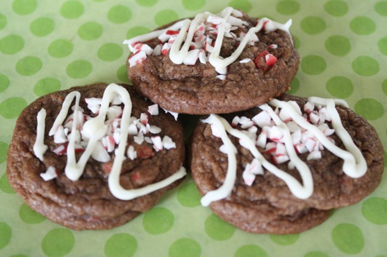 Peppermint Crunch Double Chocolate Cookies | The Picky Apple